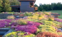 Bitkilendirilmiş Çatı Sistemlerinde Geri Dönüştürülmüş Yapı Malzemesi Kullanımının İrdelenmesi